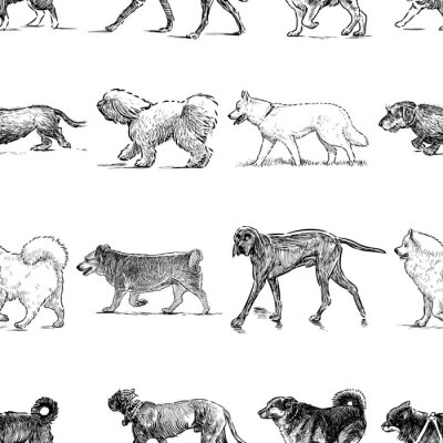 Tapeta Wzór psów różnych ras