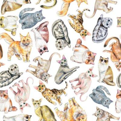 Tapeta Wzór z dziesięciu różnych ras kotów na białym tle. Ręcznie rysowane ilustracji akwarela ołówki