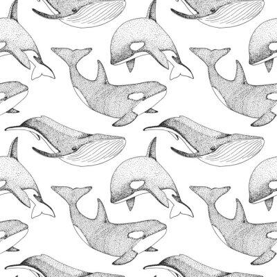 Tapeta Wzór z wielorybów, orków i innych ryb.