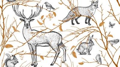 Tapeta Wzór z zwierzęta, ptaki i gałęzie drzewa.