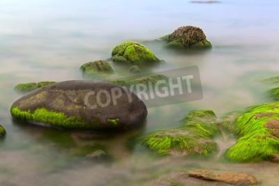 krajobraz wodorostów na skalistym brzegu długiej ekspozycji sprawia, że gładka powierzchni morza zielony raj na plaży Islandia Irlandia wymarzone miejsce