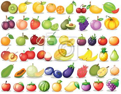 Tapeta Zbiór owoców