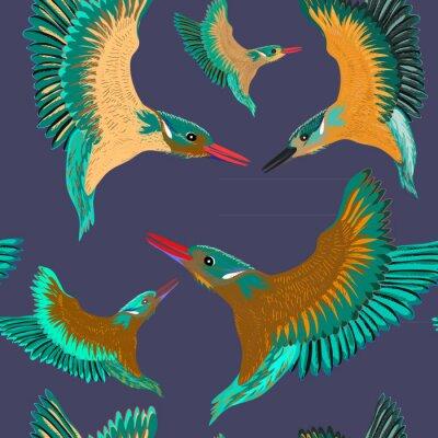 Tapeta Zimorodki wzór. Wektorowa ilustracja ptaki na zmroku - błękitny tło