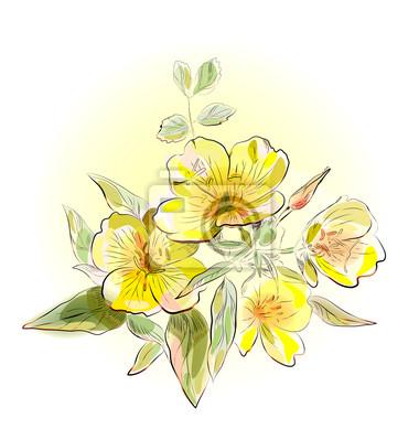 żółte kwiaty, pole