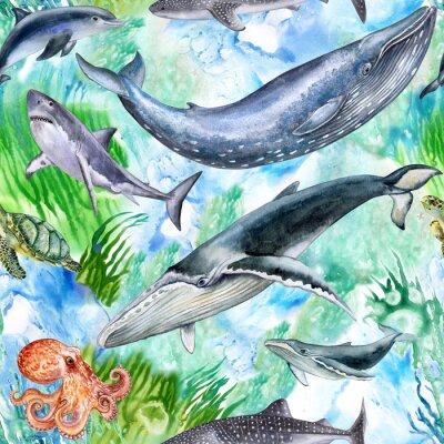 Tapeta Życie morskie. Zestaw stworzeń morskich. Mieszkańcy oceanu. Akwarela. Ilustracja. Tapeta. Bezszwowych wzorca